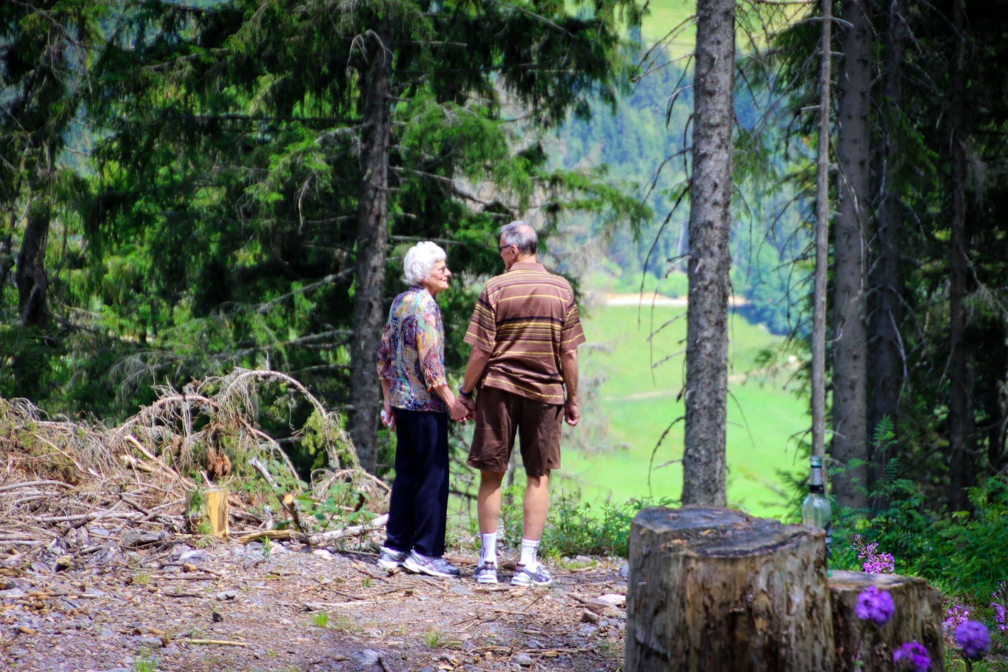 hikes for seniors in Asheville nc